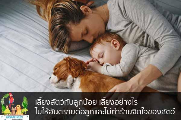 เลี้ยงสัตว์กับลูกน้อย เลี้ยงอย่างไรไม่ให้อันตรายต่อลูกและไม่ทำร้ายจิตใจของสัตว์ จัดสวนหน้าบ้าน ต้นไม้มงคล สัตว์เลี้ยงน่ารัก ทริคจัดสวน วิธีเลี้ยง หมา แมว หมู นกประหยัดงบ