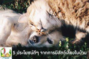 5 ประโยชน์ดีๆ จากการมีสัตว์เลี้ยงในบ้าน นอกจากเป็นเพื่อนเล่นเราแล้ว